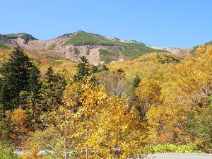 6-2 位ヶ原山荘から道を見上げる.jpg