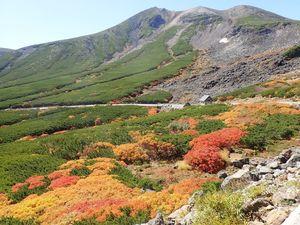 9-2 大雪渓と紅葉.jpg